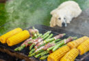 Can Dogs Eat Asparagus? – Whole Dog Journal